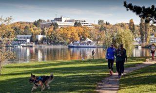 Brněnská přehrada na podzim