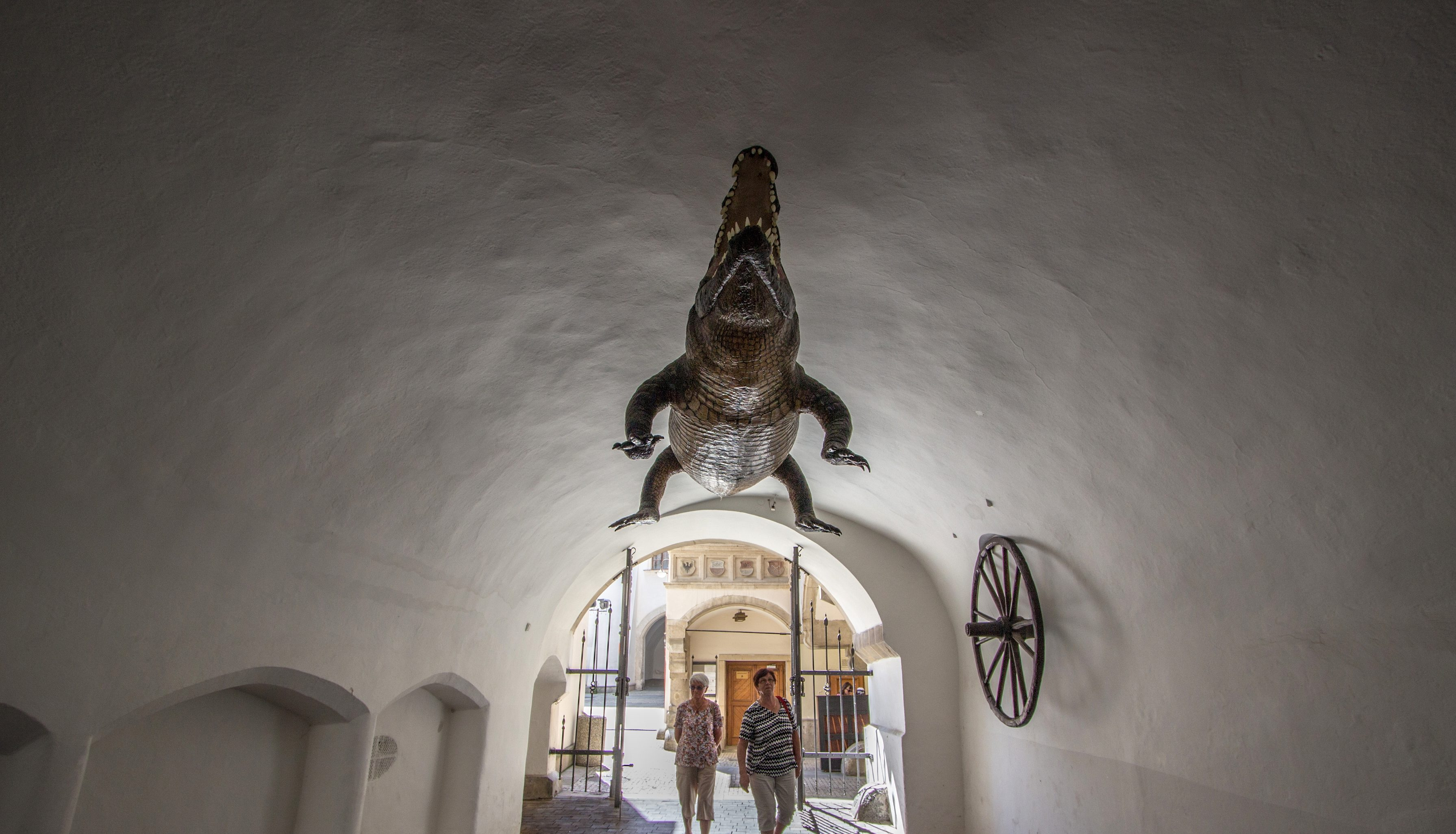 Old Town Hall in Brno, a wheel and a crocodile