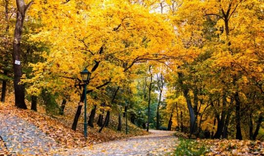 Park Špilberk under the castle of the same name, author Františka Uřičářová