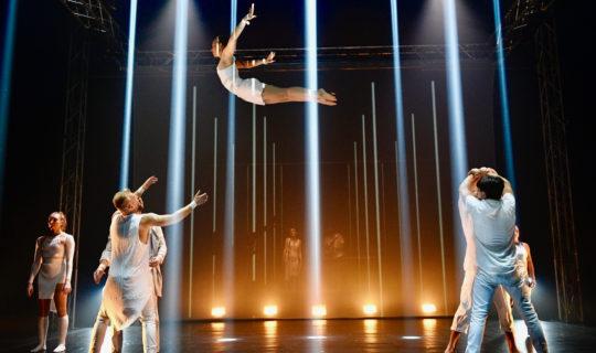 Losers Cirque Company, Cirkus bude v Brně