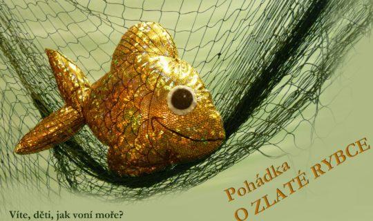o-zlate-rybě, Brněnské vánoce