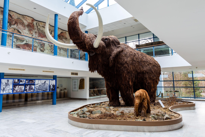 MORAVIAN MUSEUM – ANTHROPOS PAVILION