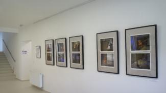 Výstava v SC Brno-sever
