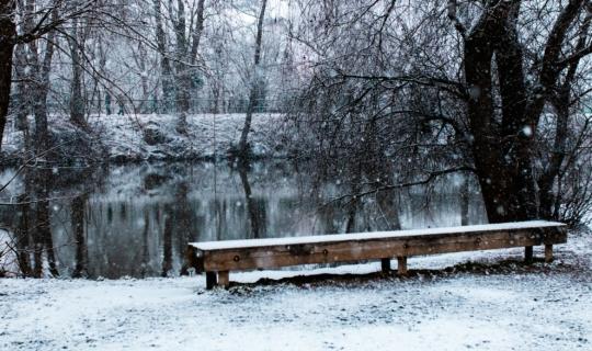 Zimní Svratka, (c) Františka Foto