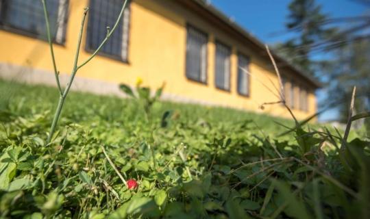 V areálu. Foto_Jiřina Rittichová (3)